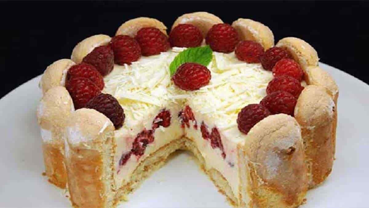 Gâteau bavarois au chocolat blanc
